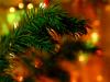 Zum Beispiel Weihnachten | Kann denn Schenken Sünde sein …